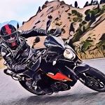 Eric Fayol (Rico) - Le Rallye du Dourdou